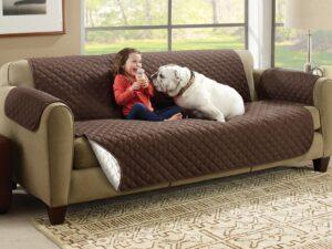 Couch Coat Sofa